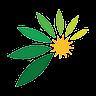 Australian Potash Ltd (apc) Logo
