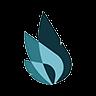 Carnaby Resources Ltd (cnb) Logo