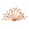 Caravel Minerals Ltd (cvv) Logo