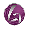 GLG Corp Ltd (gle) Logo