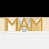 Microequities Asset Management Group Ltd (mam) Logo
