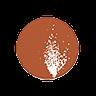 Sandfire Resources Ltd (sfr) Logo