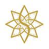 The Star Entertainment Group Ltd (sgr) Logo