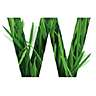 Wattle Health Australia Ltd (wha) Logo